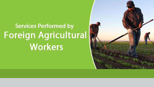 Services Performed by Foreign Agricultural Workers in US